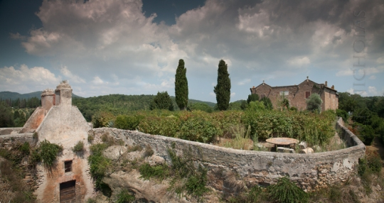 Bonaparte's residence at Musignano