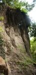 Sorano roots