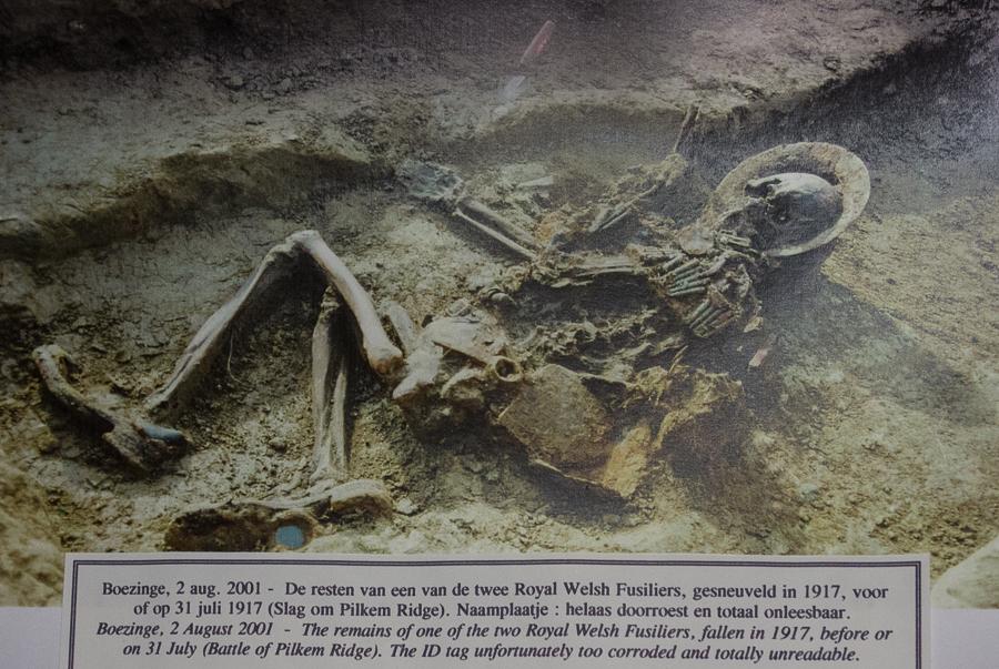 Hooge.Museum.British.skeleton.Patrick_Nicholas-9585
